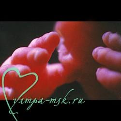 28 неделя беременности, календарь беременности,28 неделя беременности фото, 28 неделя беременности, календарь беременности узи