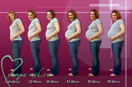 триместры беременности, первый триместр, второй беременности, третий беременности,как растет живот во время беременности,подготовка к родам